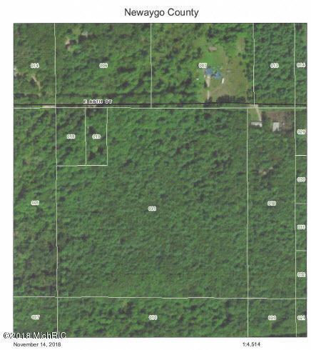 Par A E 80th Street, Newaygo, MI 49337 (MLS #18055652) :: Deb Stevenson Group - Greenridge Realty