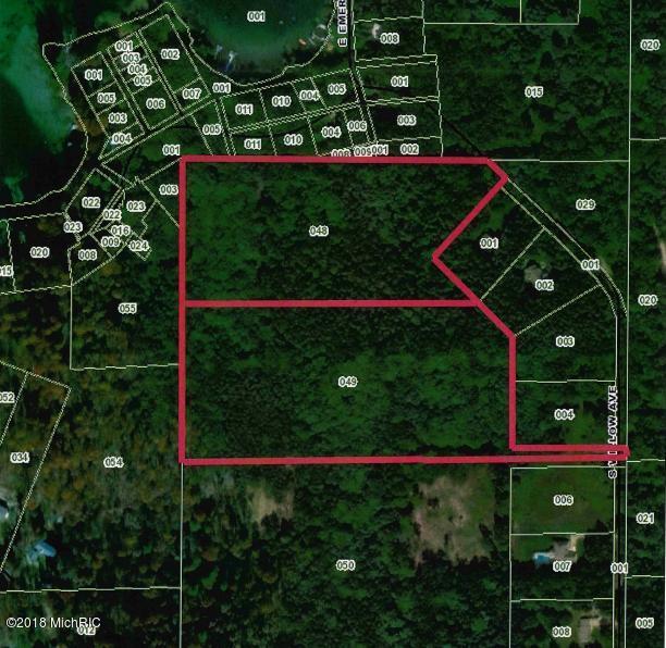 5349 Willow Avenue, Newaygo, MI 49337 (MLS #18056812) :: Deb Stevenson Group - Greenridge Realty