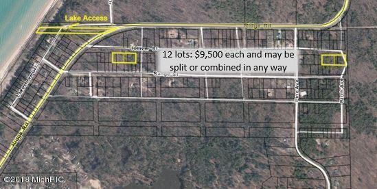 Lot 12-Blk 10 Tolliver Street, Mears, MI 49436 (MLS #18058535) :: JH Realty Partners