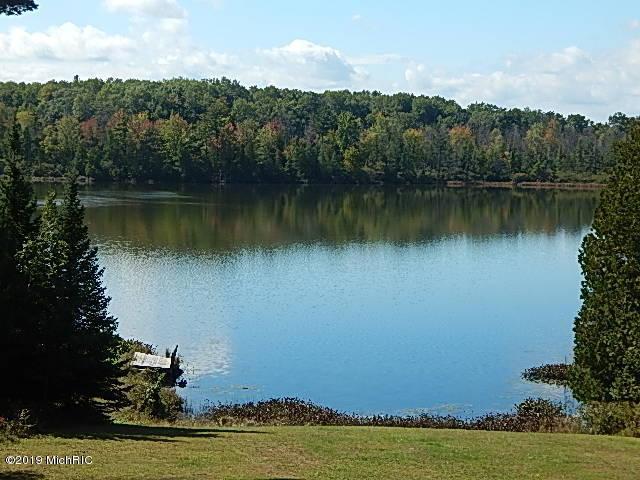 320 S Sage Lake Road, Hale, MI 48739 (MLS #19001072) :: Ginger Baxter Group