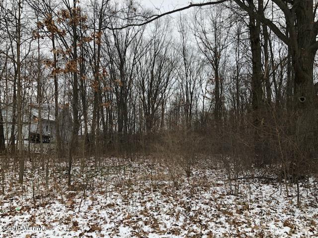 13336 Trail Creek Pass, Coopersville, MI 49404 (MLS #19001409) :: JH Realty Partners