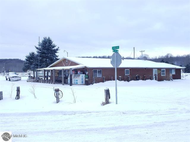 10522 N Hodenpyle Dam Road, Mesick, MI 49668 (MLS #19001740) :: Deb Stevenson Group - Greenridge Realty