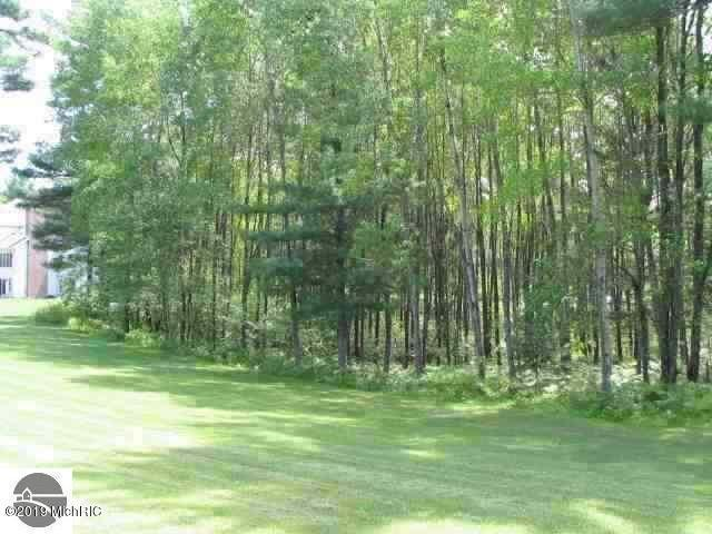 0 White Pine Drive Lot 63, Cadillac, MI 49601 (MLS #19003031) :: Deb Stevenson Group - Greenridge Realty