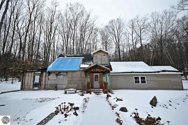157 E Forest Trail, Leroy, MI 49655 (MLS #19005103) :: Deb Stevenson Group - Greenridge Realty