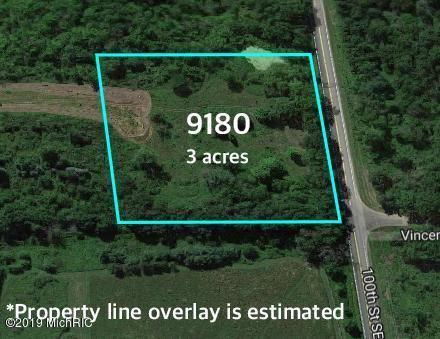 9180 100th Street SE, Alto, MI 49302 (MLS #19005475) :: JH Realty Partners