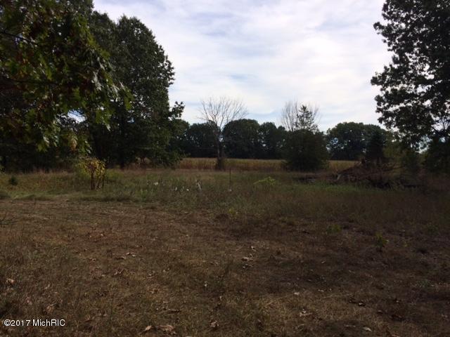 Parc 1 Longest Drive, Otsego, MI 49078 (MLS #19009135) :: Matt Mulder Home Selling Team