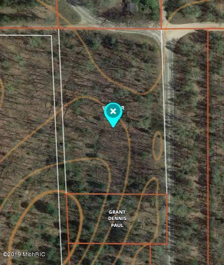 S Astor Road, Baldwin, MI 49304 (MLS #19012772) :: Matt Mulder Home Selling Team