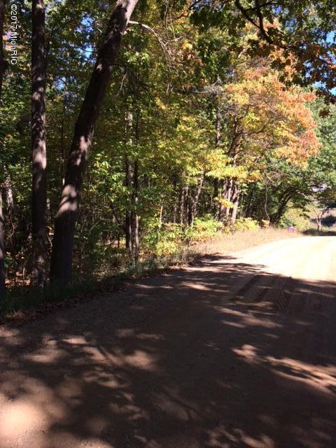 15 Ac 4 Mile Road, Plainwell, MI 49080 (MLS #19013151) :: Deb Stevenson Group - Greenridge Realty