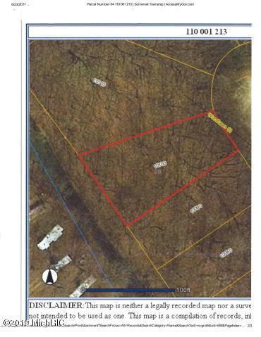 10100 Woodlawn Ct, Jerome, MI 49249 (MLS #19014802) :: CENTURY 21 C. Howard
