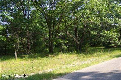 Lot E E River Road, Muskegon, MI 49445 (MLS #19014930) :: Matt Mulder Home Selling Team