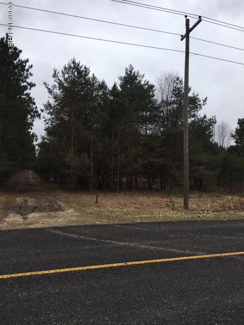 Vacant Milks Road, Kaleva, MI 49645 (MLS #19015204) :: Deb Stevenson Group - Greenridge Realty