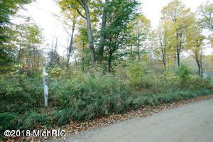 1194 108th Avenue, Plainwell, MI 49080 (MLS #19019041) :: Matt Mulder Home Selling Team