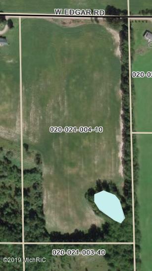Par B W Edgar Rd, Howard City, MI 49329 (MLS #19019741) :: Deb Stevenson Group - Greenridge Realty