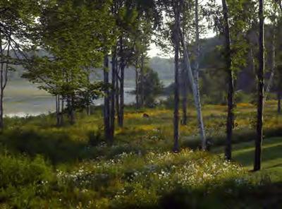 Lot 3 Wooded Lake Drive, Ludington, MI 49431 (MLS #19019794) :: Deb Stevenson Group - Greenridge Realty