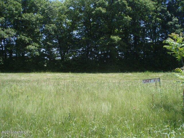 v/l Cygnet Drive #11, Otsego, MI 49078 (MLS #19022737) :: Matt Mulder Home Selling Team