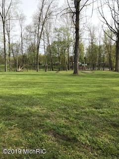 6665 W Riverview Drive, Grant, MI 49327 (MLS #19022760) :: Matt Mulder Home Selling Team