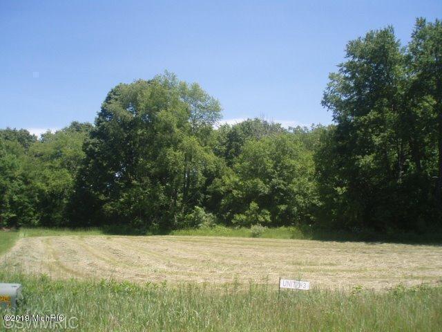 v/l Cygnet Drive #3, Otsego, MI 49078 (MLS #19022790) :: Matt Mulder Home Selling Team