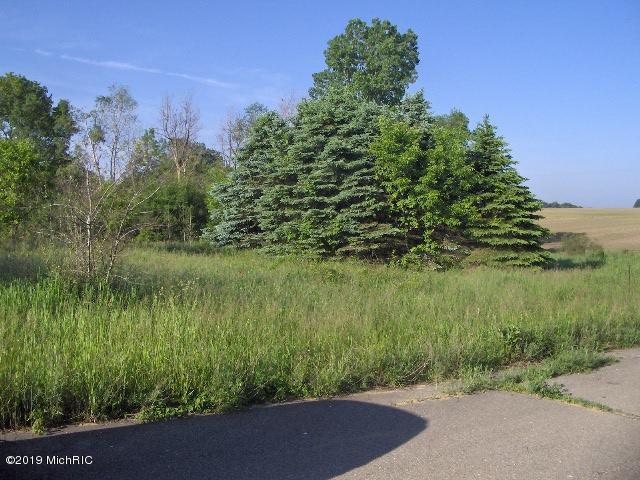 Lot 7 Olmstead Road, Ionia, MI 48846 (MLS #19025317) :: Ron Ekema Team