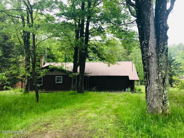 317 E Sauble Drive, Free Soil, MI 49411 (MLS #19027102) :: Deb Stevenson Group - Greenridge Realty