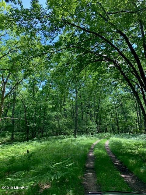 V/L-40A Gopher Trail, Baldwin, MI 49304 (MLS #19028350) :: JH Realty Partners