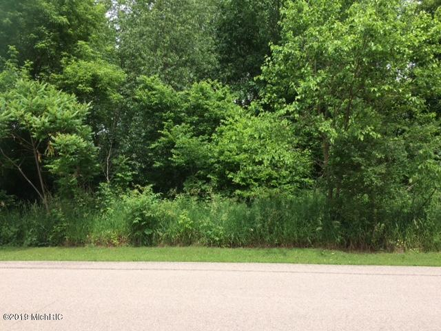 Lot #8 Hidden Ponds Drive, Martin, MI 49070 (MLS #19029924) :: JH Realty Partners