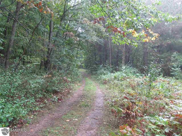 0 Skookum Road, Luther, MI 49656 (MLS #19031711) :: Deb Stevenson Group - Greenridge Realty