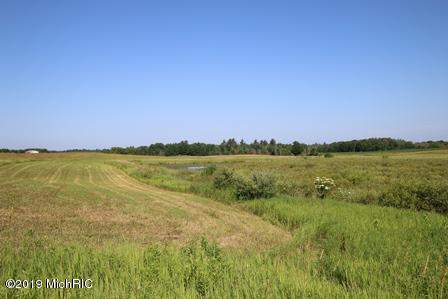 9378 W 7 Mile, Reed City, MI 49677 (MLS #19032958) :: Deb Stevenson Group - Greenridge Realty