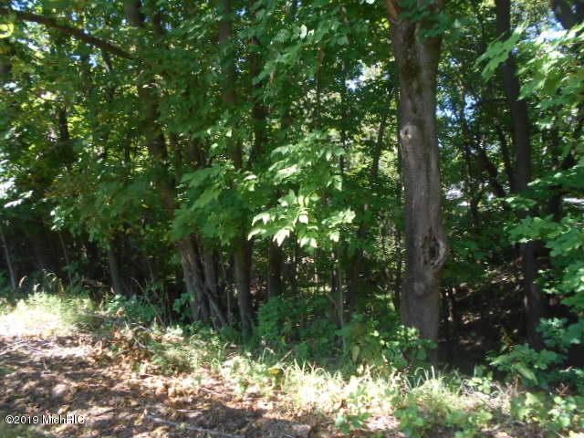 S V/L Emerson Lake Road, Fountain, MI 49410 (MLS #19038747) :: CENTURY 21 C. Howard