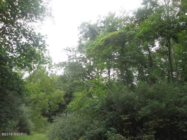 V/L Ole Cutlers Pass Drive, Hastings, MI 49058 (MLS #19045224) :: Deb Stevenson Group - Greenridge Realty