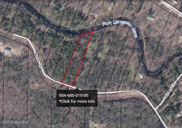 Lot 10 Ann Drive, Walkerville, MI 49459 (MLS #19045249) :: CENTURY 21 C. Howard