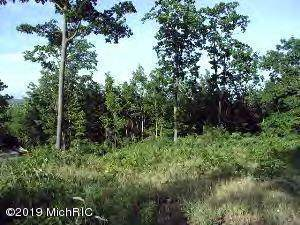0 Woodridge Lot 9, Mears, MI 49436 (MLS #19045272) :: Deb Stevenson Group - Greenridge Realty