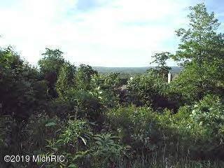 0 Woodridge Drive Lot 2, Mears, MI 49436 (MLS #19045639) :: Deb Stevenson Group - Greenridge Realty