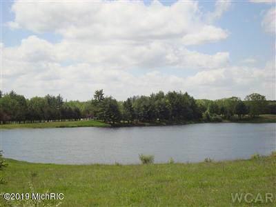 11512 Tullymore Drive, Canadian Lakes, MI 49346 (MLS #19050172) :: Deb Stevenson Group - Greenridge Realty