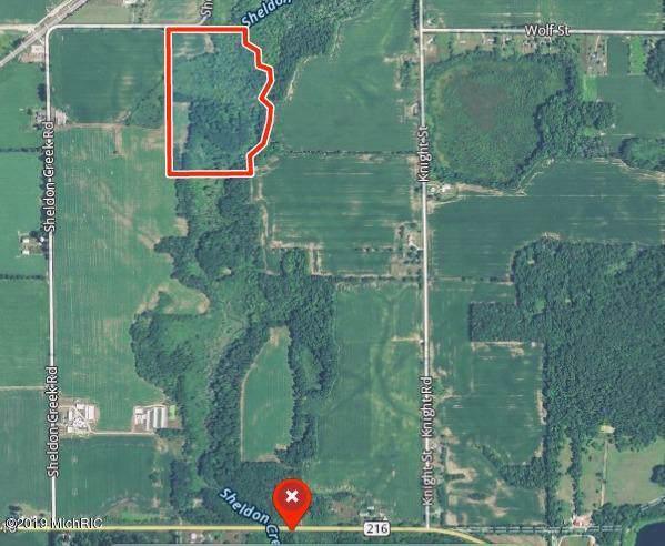 Sheldon Creek Road, Marcellus, MI 49067 (MLS #19050244) :: Deb Stevenson Group - Greenridge Realty