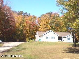 63020 Lake Street, Sturgis, MI 49091 (MLS #19050361) :: Deb Stevenson Group - Greenridge Realty