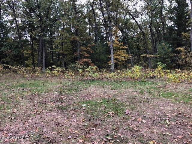 0 Fruitvale Road, Holton, MI 49425 (MLS #19051558) :: JH Realty Partners