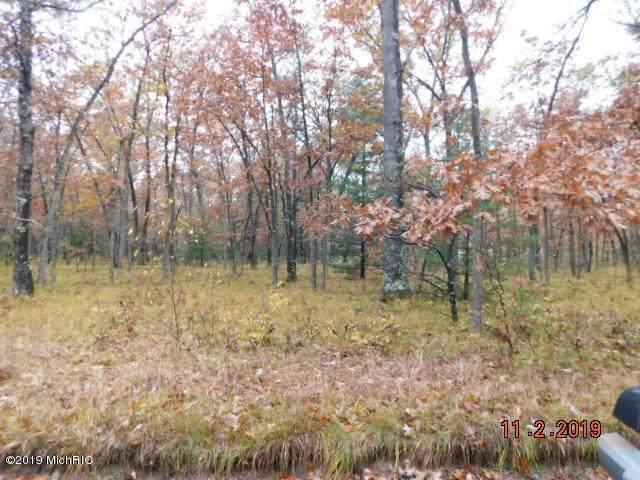 Marzinski Road, Manistee, MI 49660 (MLS #19053896) :: Deb Stevenson Group - Greenridge Realty