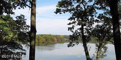 3865 Forest Trail, Allegan, MI 49010 (MLS #19055270) :: CENTURY 21 C. Howard
