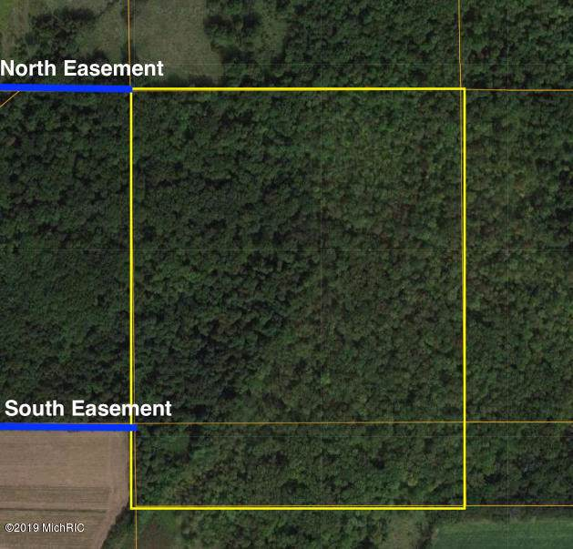 50-Acres S 47th Street, Climax, MI 49034 (MLS #19057022) :: Ginger Baxter Group