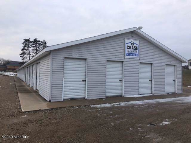 6849 Adam Street, Chase, MI 49623 (MLS #19058346) :: Deb Stevenson Group - Greenridge Realty