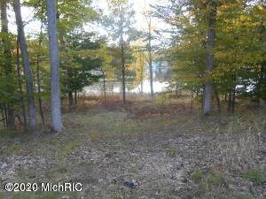 Lot 7 W Pickerel Pointe, Newaygo, MI 49337 (MLS #20004706) :: Deb Stevenson Group - Greenridge Realty