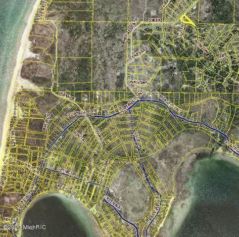 3379 Smith Road, Onekama, MI 49675 (MLS #20004731) :: Matt Mulder Home Selling Team