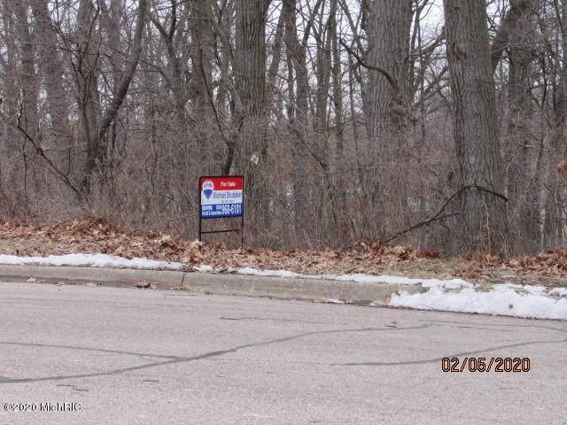 40 Castle Drive, Springfield, MI 49037 (MLS #20005275) :: CENTURY 21 C. Howard