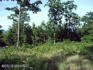 0 Woodridge Lot 9, Mears, MI 49436 (MLS #20006575) :: Deb Stevenson Group - Greenridge Realty