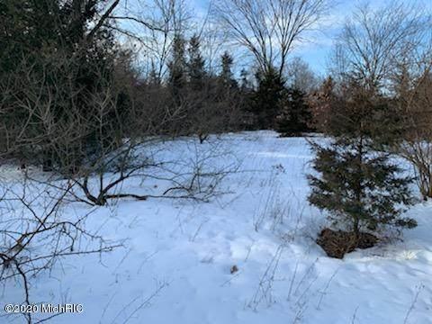 8711 W Snows Lake Road, Greenville, MI 48838 (MLS #20006708) :: Jennifer Lane-Alwan