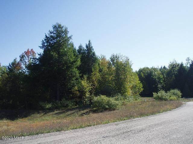 Parcel EE Wildflower Lane, Onekama, MI 49675 (MLS #20016879) :: CENTURY 21 C. Howard