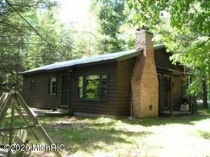 2333 W Timber Lane, Baldwin, MI 49304 (MLS #20018185) :: Deb Stevenson Group - Greenridge Realty