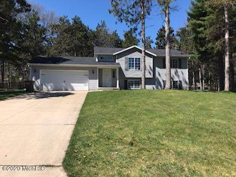 7246 High Timber Drive, Greenville, MI 48838 (MLS #20019201) :: JH Realty Partners