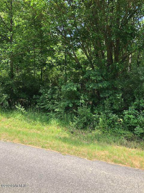 Lot 111 Treimanis Way, Three Rivers, MI 49093 (MLS #20024660) :: Deb Stevenson Group - Greenridge Realty