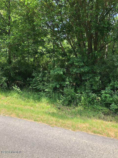 Lot 112 Treimanis Way, Three Rivers, MI 49093 (MLS #20024667) :: Deb Stevenson Group - Greenridge Realty